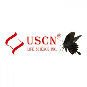 StratechSite-logo-USCN