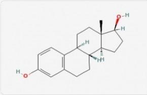 Salivary Estradiol
